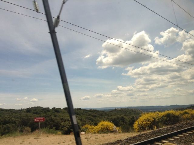 View from the train, near Nimes