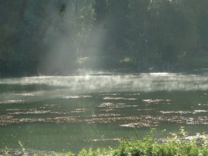 Mist on the Yonne.