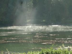 Mist on the Yonne.