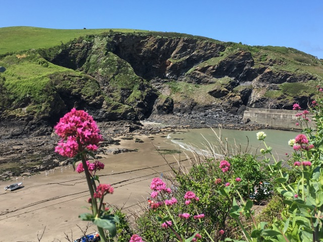 Port Isaac harbour. Tides out.