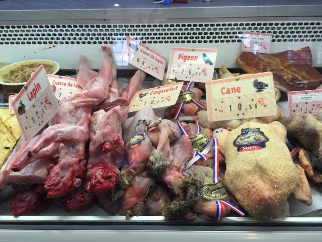 Rabbit and different types of poultry including coquelet, cane and pigeon