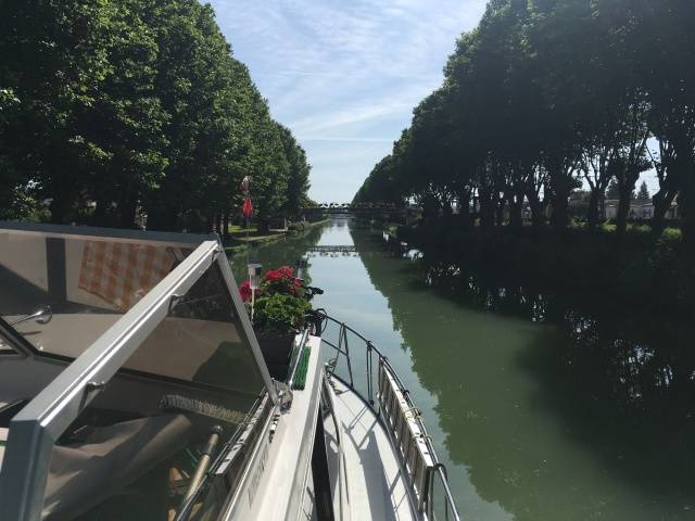 Tree-lined Canal de Bourgogne