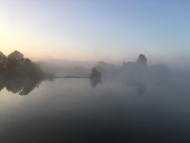 We woke to mist.